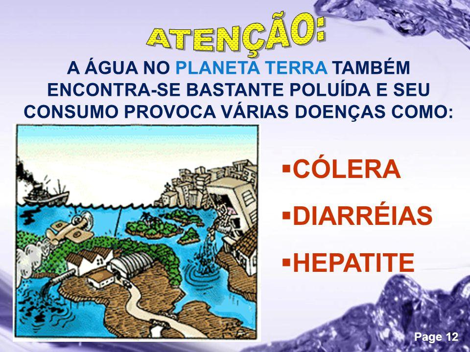 Powerpoint Templates Page 12 A ÁGUA NO PLANETA TERRA TAMBÉM ENCONTRA-SE BASTANTE POLUÍDA E SEU CONSUMO PROVOCA VÁRIAS DOENÇAS COMO:  CÓLERA  DIARRÉIAS  HEPATITE