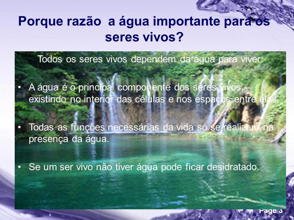 Powerpoint Templates Page 3 Porque razão a água importante para os seres vivos.