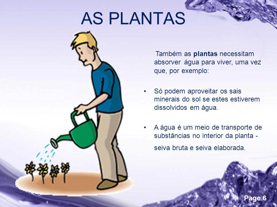 Powerpoint Templates Page 6 AS PLANTAS Também as plantas necessitam absorver água para viver, uma vez que, por exemplo: •Só podem aproveitar os sais minerais do sol se estes estiverem dissolvidos em água.