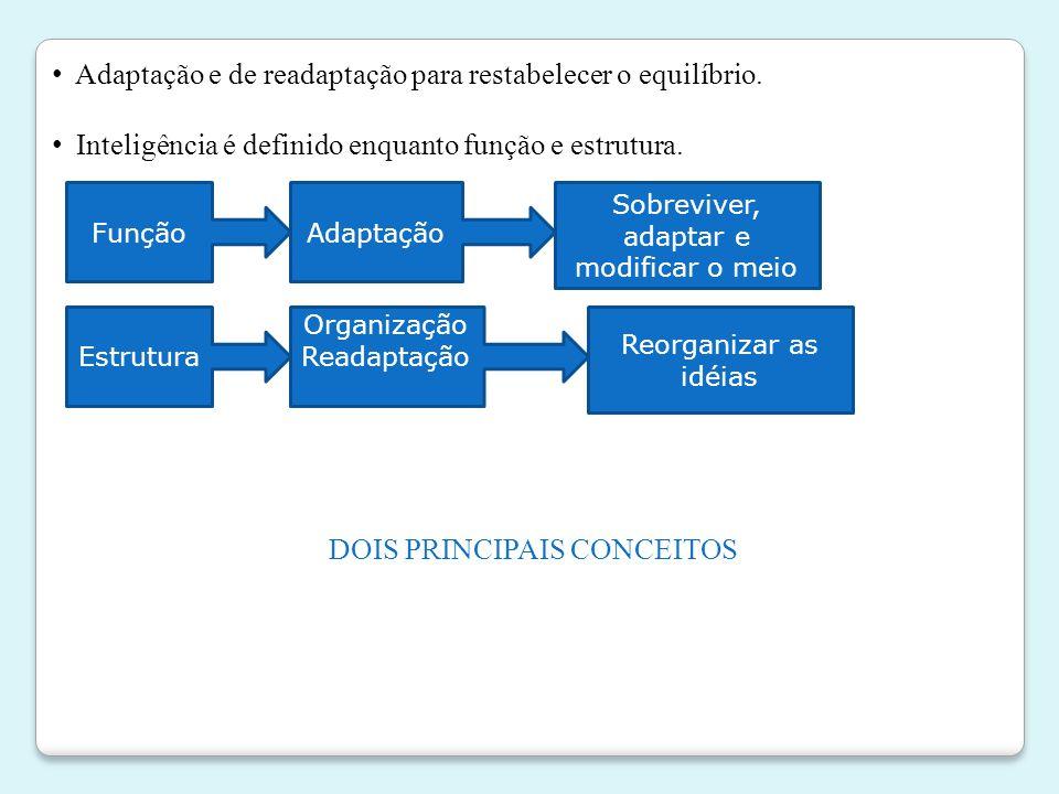 • Adaptação e de readaptação para restabelecer o equilíbrio. • Inteligência é definido enquanto função e estrutura. FunçãoAdaptação Sobreviver, adapta