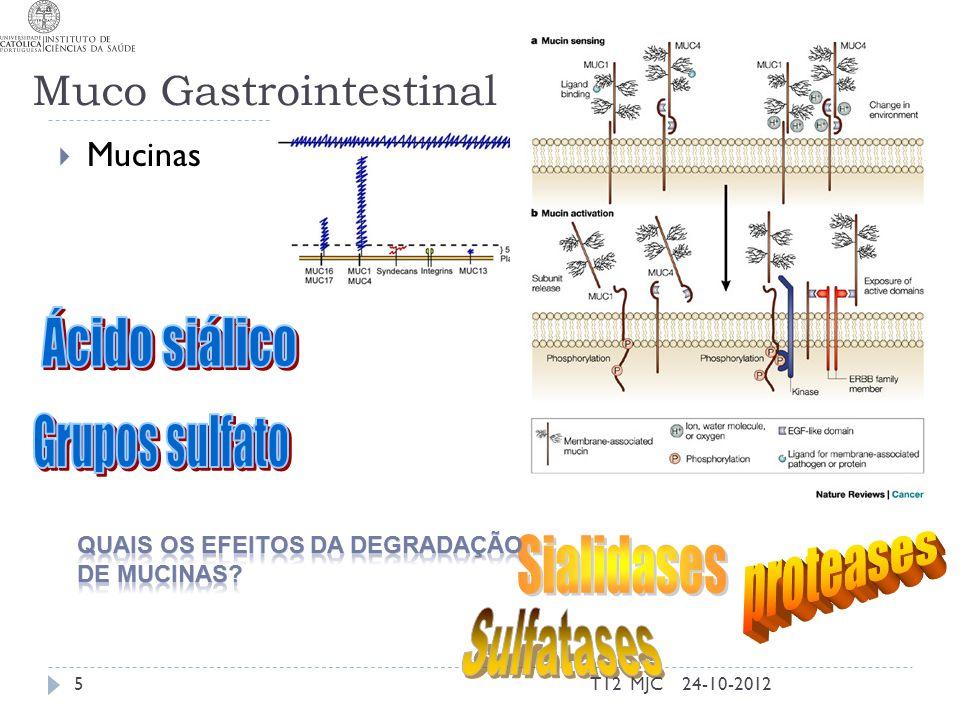 Helicobacter pylori  Coloniza mucosa gástrica  Destrói epitélio  Coloniza grande parte da população 24-10-2012T12 MJC26