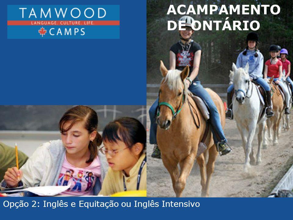 ACAMPAMENTO DE ONTÁRIO Opção 2: Inglês e Equitação ou Inglês Intensivo