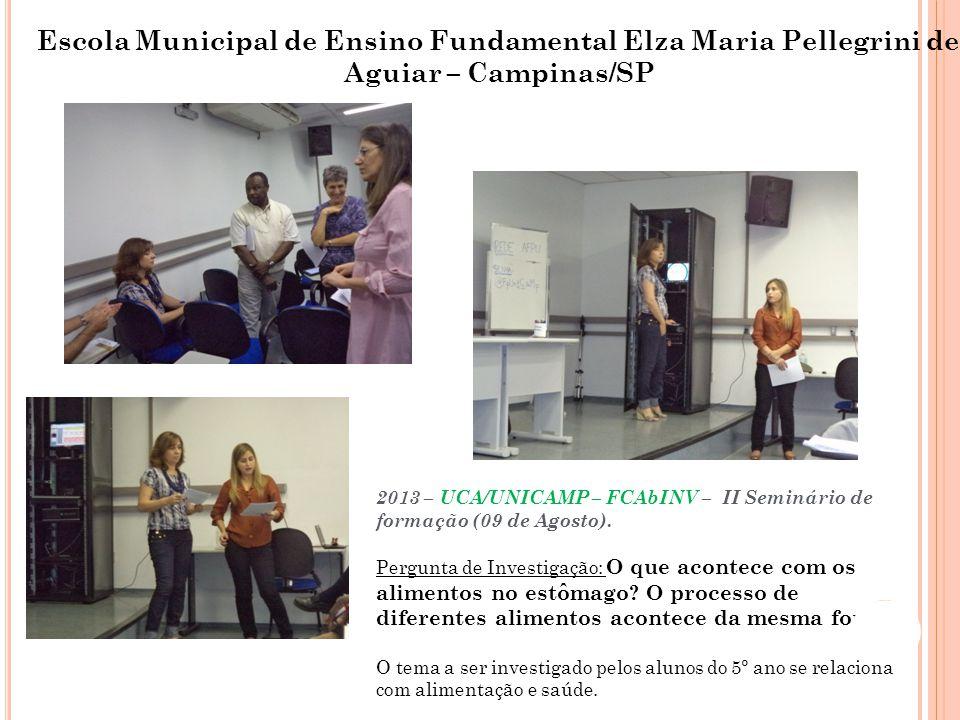 Escola Municipal de Ensino Fundamental José Benigo Gomes – Sud Mennucci/SP 2013 – UCA/UNICAMP – FCAbINV – II Seminário de formação (09 de Agosto).