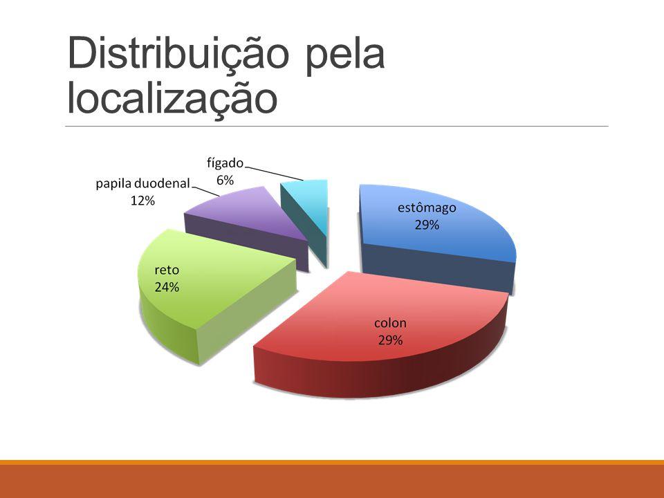 Distribuição pela localização