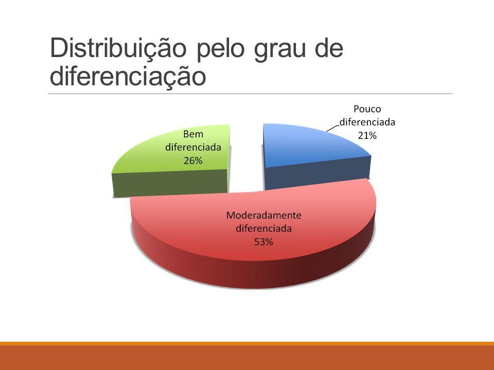 Distribuição pelo grau de diferenciação