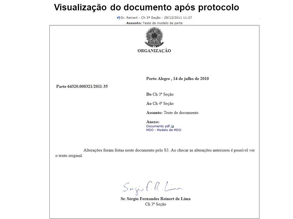 Visualização do documento após protocolo