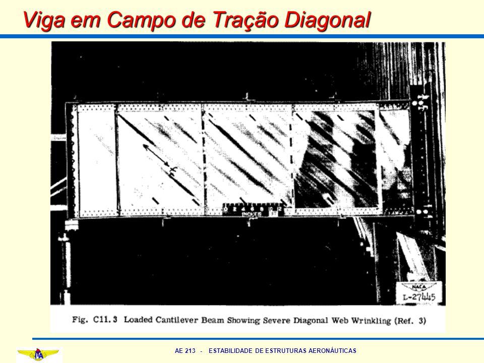 AE 213 - ESTABILIDADE DE ESTRUTURAS AERONÁUTICAS Viga em Campo de Tração Diagonal