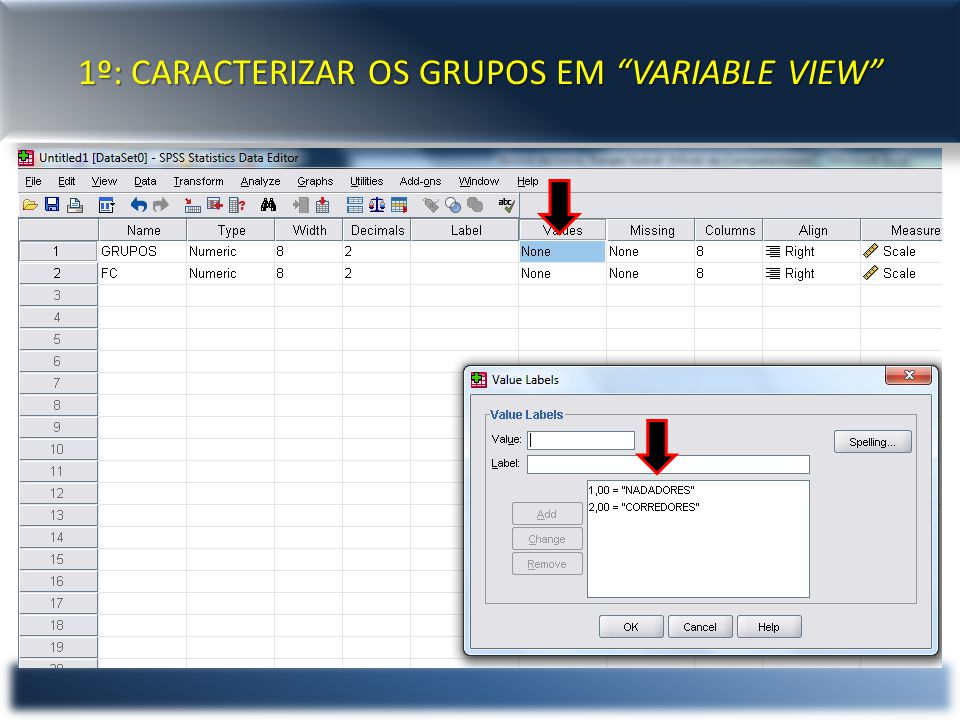 "1º: CARACTERIZAR OS GRUPOS EM ""VARIABLE VIEW"""