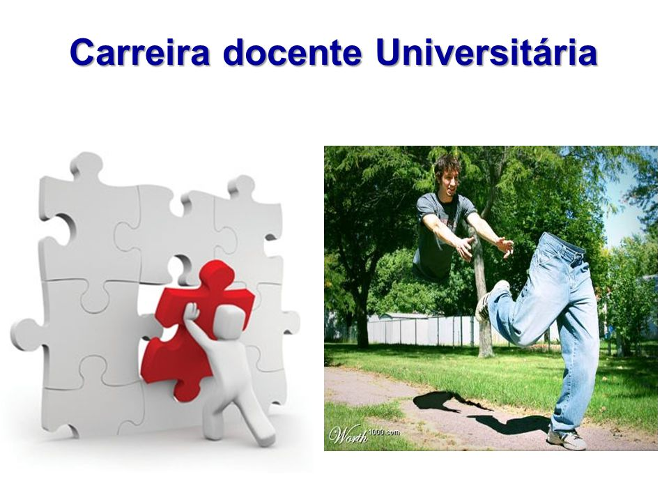 Carreira docente Universitária