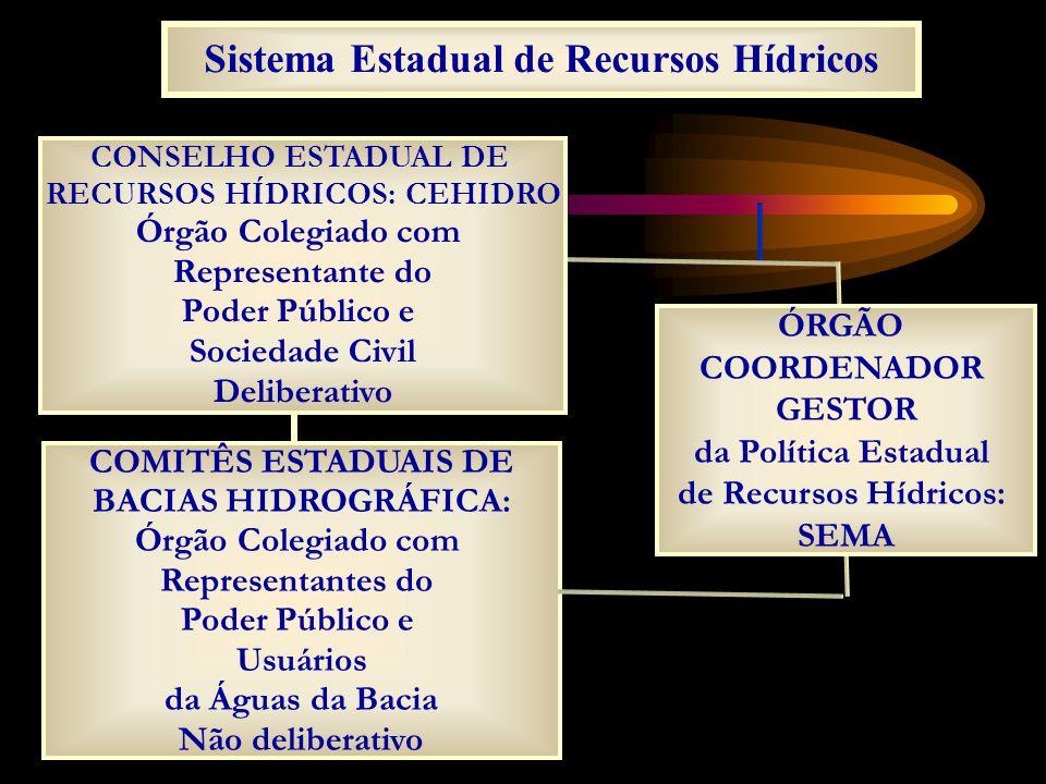 Sistema Estadual de Recursos Hídricos CONSELHO ESTADUAL DE RECURSOS HÍDRICOS: CEHIDRO Órgão Colegiado com Representante do Poder Público e Sociedade C