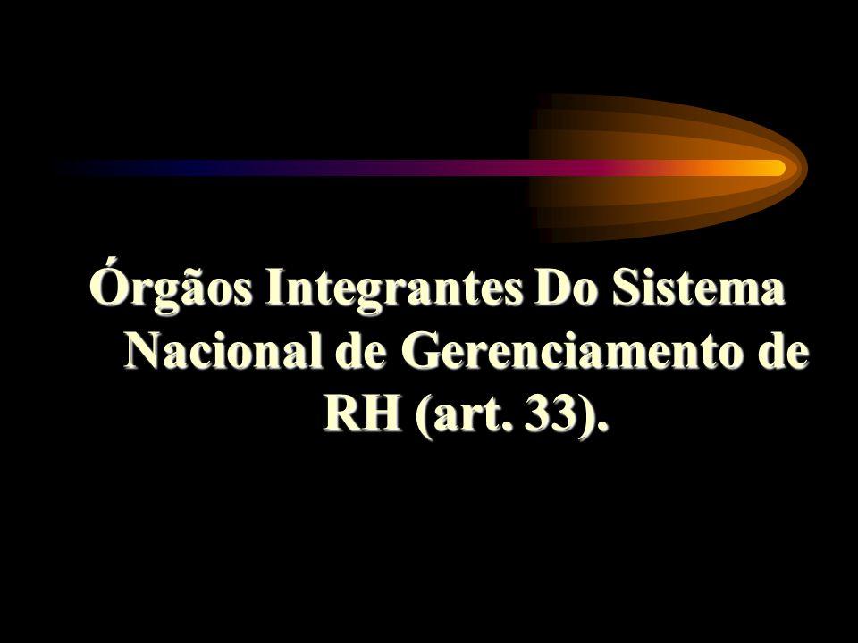 Órgãos Integrantes Do Sistema Nacional de Gerenciamento de RH (art. 33).