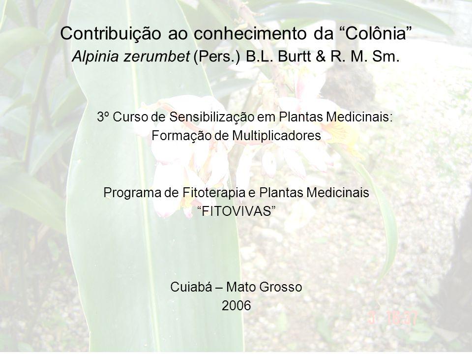 """3º Curso de Sensibilização em Plantas Medicinais: Formação de Multiplicadores Programa de Fitoterapia e Plantas Medicinais """"FITOVIVAS"""" Cuiabá – Mato G"""