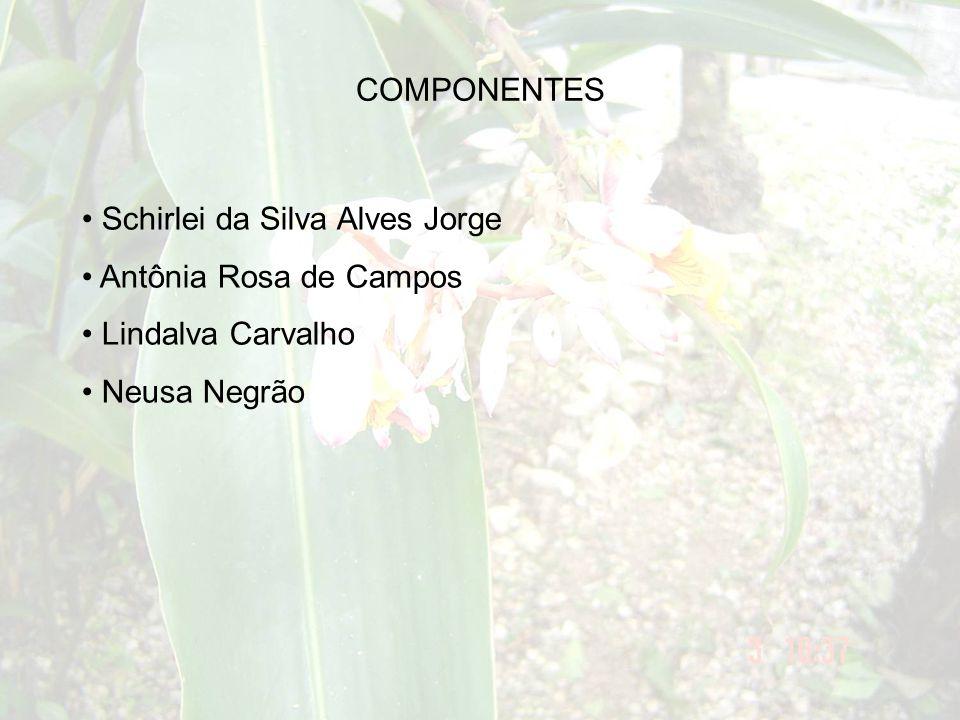 USOS EM OUTRAS LOCALIDADES Cuba afecções da pele (decocto das folhas e flores), uso externo combater catarro (decocto das folhas e flores).