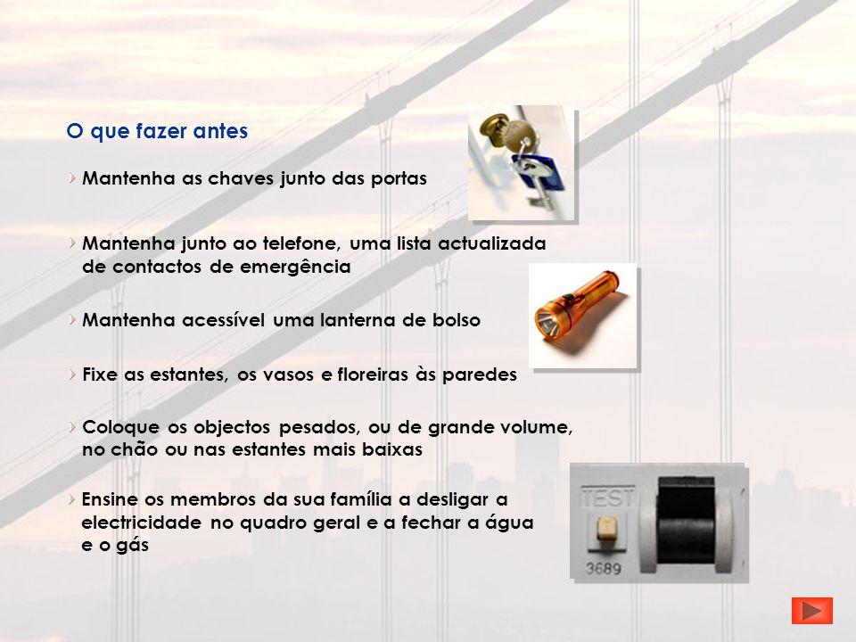 Mantenha as chaves junto das portas O que fazer antes Mantenha acessível uma lanterna de bolso Mantenha junto ao telefone, uma lista actualizada de co