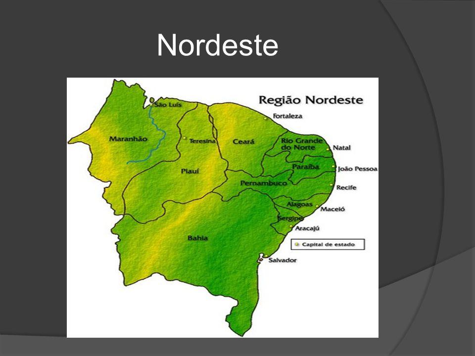 Características  Região com maior número de estados (9);  Área 1 558 196 km²;  População 53 591 197 hab.