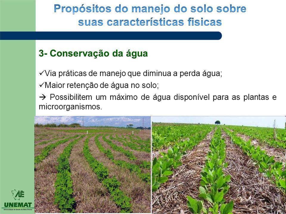  Via práticas de manejo que diminua a perda água;  Maior retenção de água no solo;  Possibilitem um máximo de água disponível para as plantas e mic