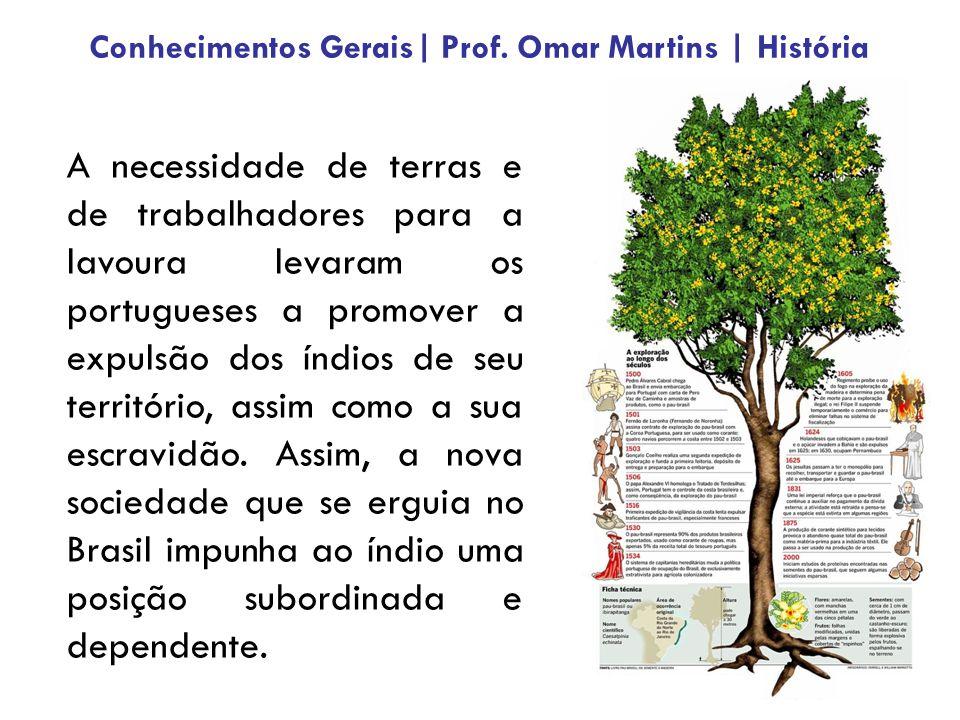 A necessidade de terras e de trabalhadores para a lavoura levaram os portugueses a promover a expulsão dos índios de seu território, assim como a sua