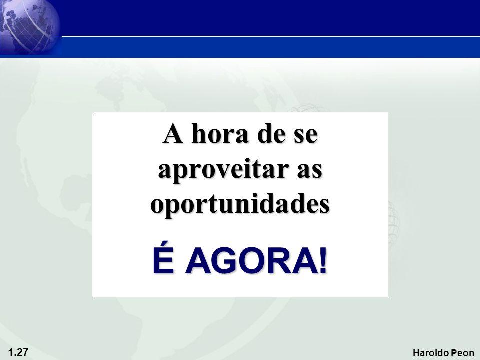 1.27 Haroldo Peon A hora de se aproveitar as oportunidades É AGORA!