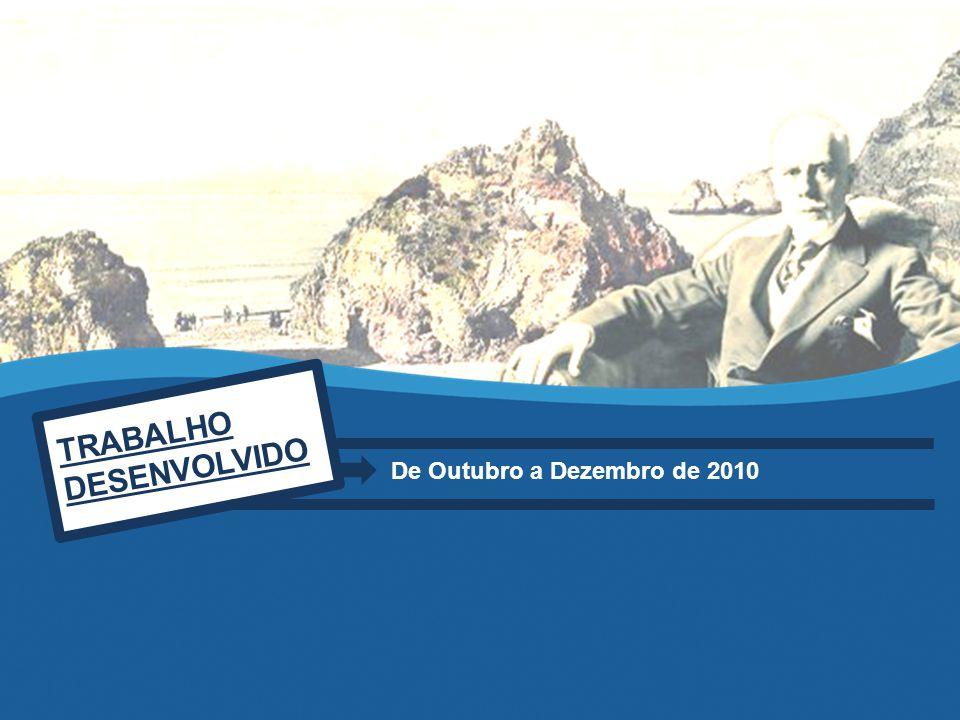 TRABALHO DESENVOLVIDO De Outubro a Dezembro de 2010