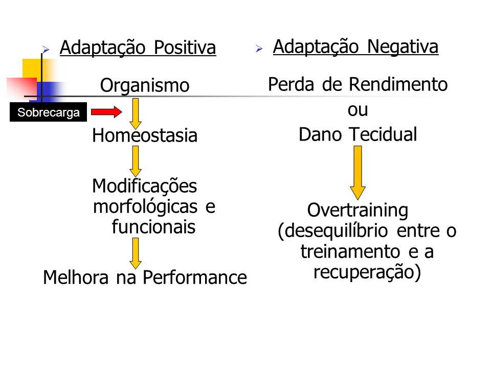  Adaptação Positiva Organismo Homeostasia Modificações morfológicas e funcionais Melhora na Performance  Adaptação Negativa Perda de Rendimento ou Dano Tecidual Overtraining (desequilíbrio entre o treinamento e a recuperação) Sobrecarga