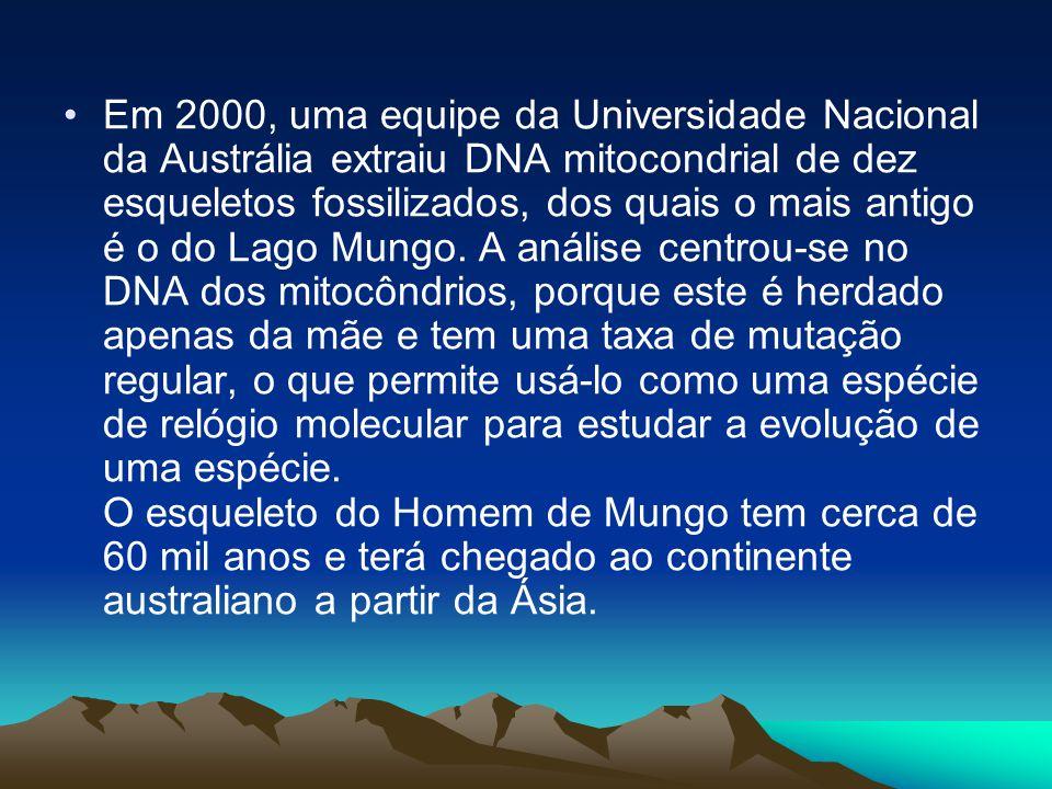 •Em 2000, uma equipe da Universidade Nacional da Austrália extraiu DNA mitocondrial de dez esqueletos fossilizados, dos quais o mais antigo é o do Lago Mungo.