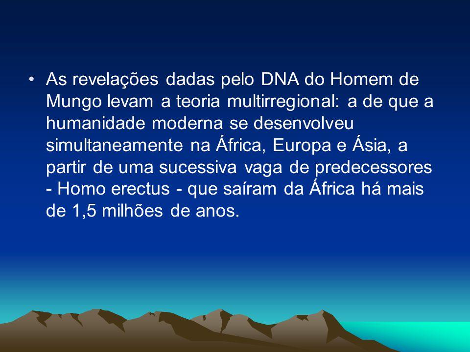 •As revelações dadas pelo DNA do Homem de Mungo levam a teoria multirregional: a de que a humanidade moderna se desenvolveu simultaneamente na África, Europa e Ásia, a partir de uma sucessiva vaga de predecessores - Homo erectus - que saíram da África há mais de 1,5 milhões de anos.