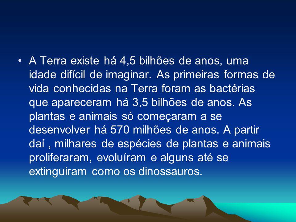 •A Terra existe há 4,5 bilhões de anos, uma idade difícil de imaginar. As primeiras formas de vida conhecidas na Terra foram as bactérias que aparecer