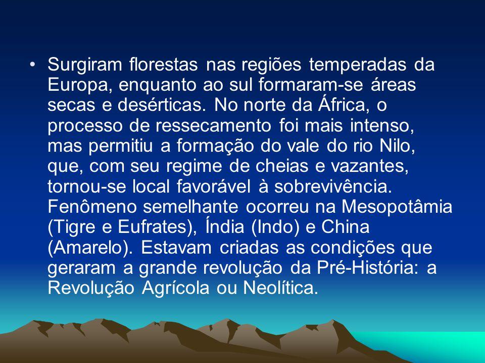 •Surgiram florestas nas regiões temperadas da Europa, enquanto ao sul formaram-se áreas secas e desérticas. No norte da África, o processo de ressecam