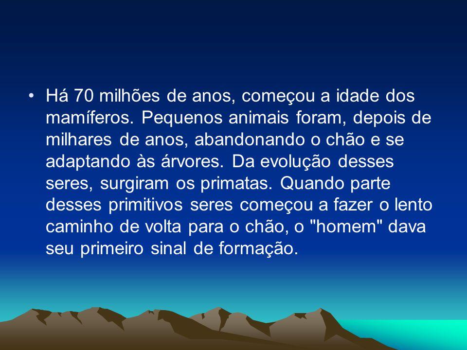 •Há 70 milhões de anos, começou a idade dos mamíferos. Pequenos animais foram, depois de milhares de anos, abandonando o chão e se adaptando às árvore
