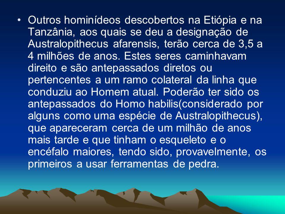 •Outros hominídeos descobertos na Etiópia e na Tanzânia, aos quais se deu a designação de Australopithecus afarensis, terão cerca de 3,5 a 4 milhões d