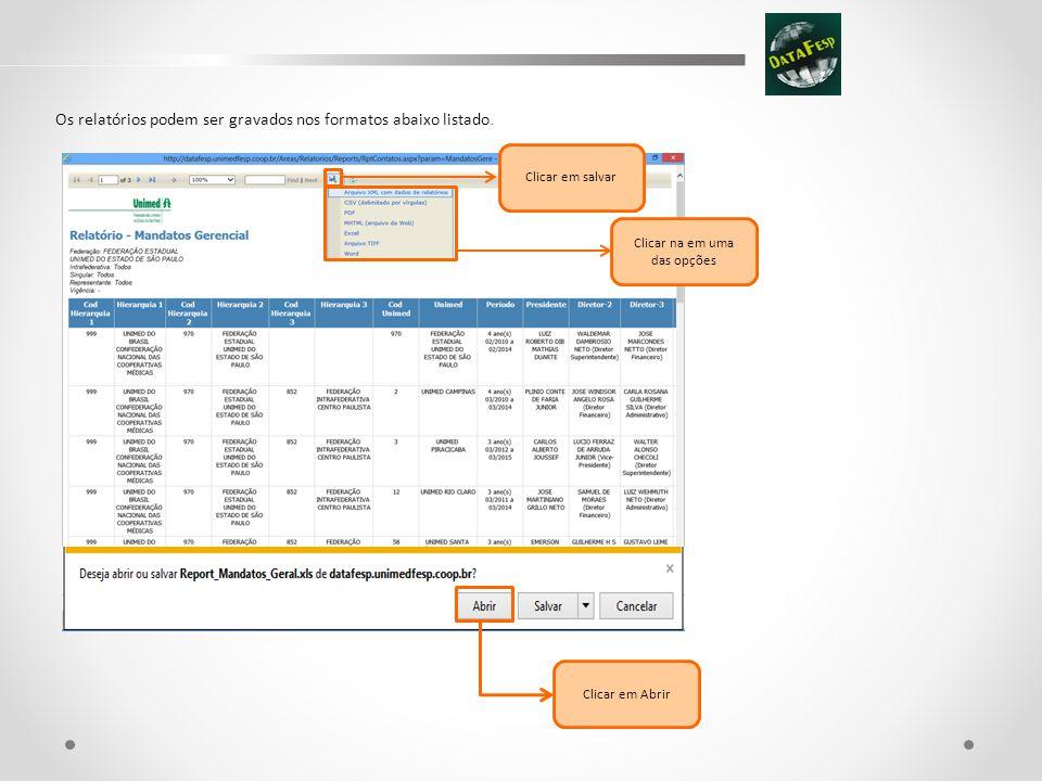 Os relatórios podem ser gravados nos formatos abaixo listado.