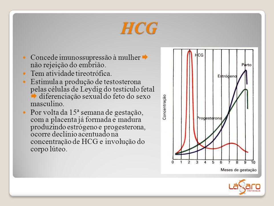  Concede imunossupressão à mulher  não rejeição do embrião.  Tem atividade tireotrófica.  Estimula a produção de testosterona pelas células de Ley
