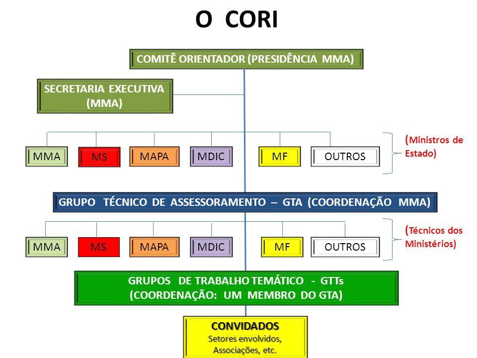 IV - A ESTRUTURAÇÃO E A IMPLEMENTAÇÃO DA LOGÍSTICA REVERSA