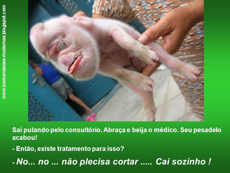 www.barbaridades-modernas.blogspot.com Sai pulando pelo consultório. Abraça e beija o médico. Seu pesadelo acabou! - Então, existe tratamento para iss