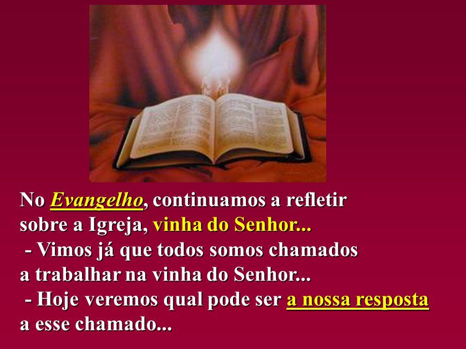 No Evangelho, Evangelho, continuamos a refletir sobre a Igreja, vinha do Senhor...