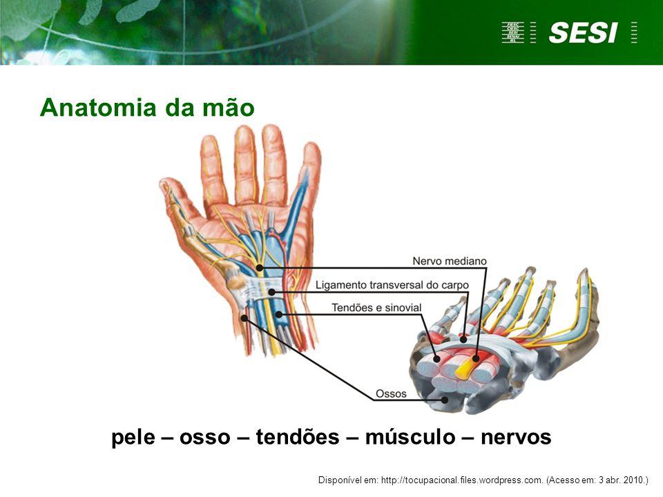pele – osso – tendões – músculo – nervos Anatomia da mão Disponível em: http://tocupacional.files.wordpress.com.
