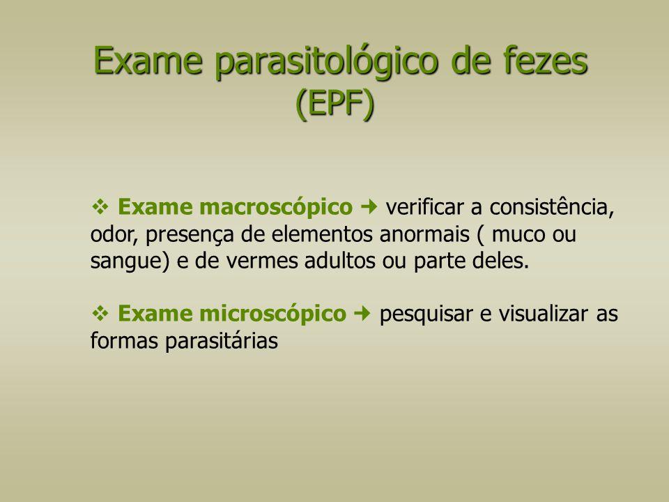  Exame macroscópico verificar a consistência, odor, presença de elementos anormais ( muco ou sangue) e de vermes adultos ou parte deles.  Exame micr