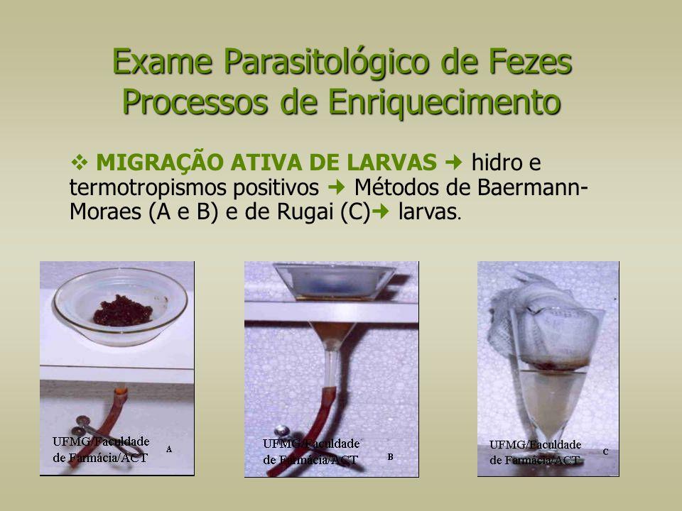  MIGRAÇÃO ATIVA DE LARVAS hidro e termotropismos positivos Métodos de Baermann- Moraes (A e B) e de Rugai (C) larvas. Exame Parasitológico de Fezes P