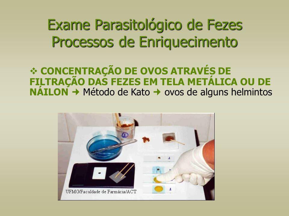  CONCENTRAÇÃO DE OVOS ATRAVÉS DE FILTRAÇÃO DAS FEZES EM TELA METÁLICA OU DE NÁILON Método de Kato ovos de alguns helmintos Exame Parasitológico de Fe