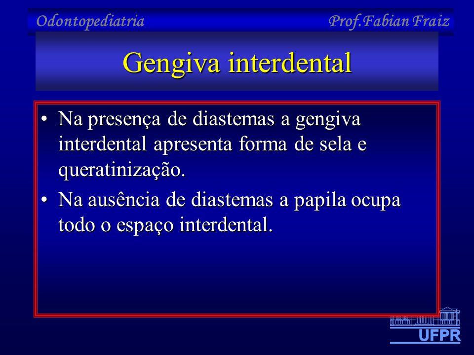 Gengiva interdental •Na presença de diastemas a gengiva interdental apresenta forma de sela e queratinização. •Na ausência de diastemas a papila ocupa