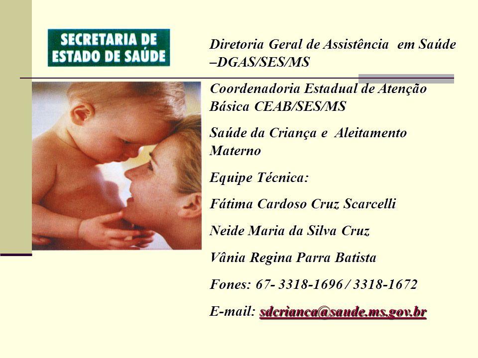 Diretoria Geral de Assistência em Saúde –DGAS/SES/MS Coordenadoria Estadual de Atenção Básica CEAB/SES/MS Saúde da Criança e Aleitamento Materno Equip