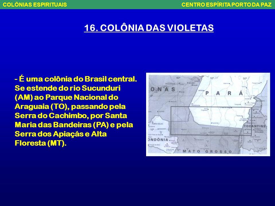 15. COLÔNIA DO ROUXINOL - Fica ao norte do Brasil, no Maranhão, na região que envolve a Serra das Alpercatas. - Suas extremidades aproximam-se ao nort