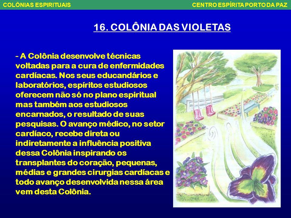 16. COLÔNIA DAS VIOLETAS - É uma colônia do Brasil central. Se estende do rio Sucunduri (AM) ao Parque Nacional do Araguaia (TO), passando pela Serra