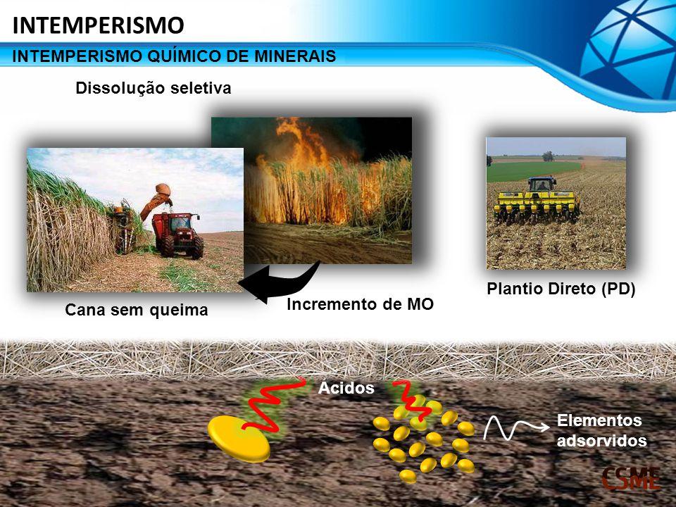 Dissolução seletiva Incremento de MO Cana sem queima Plantio Direto (PD) Ácidos Elementos adsorvidos INTEMPERISMO QUÍMICO DE MINERAIS INTEMPERISMO