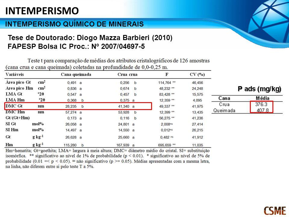 Tese de Doutorado: Diogo Mazza Barbieri (2010) FAPESP Bolsa IC Proc.: Nº 2007/04697-5 INTEMPERISMO QUÍMICO DE MINERAIS INTEMPERISMO