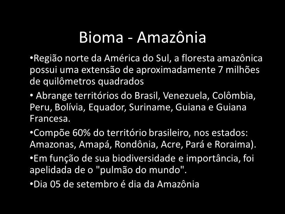 Bioma - Amazônia • Região norte da América do Sul, a floresta amazônica possui uma extensão de aproximadamente 7 milhões de quilômetros quadrados • Ab