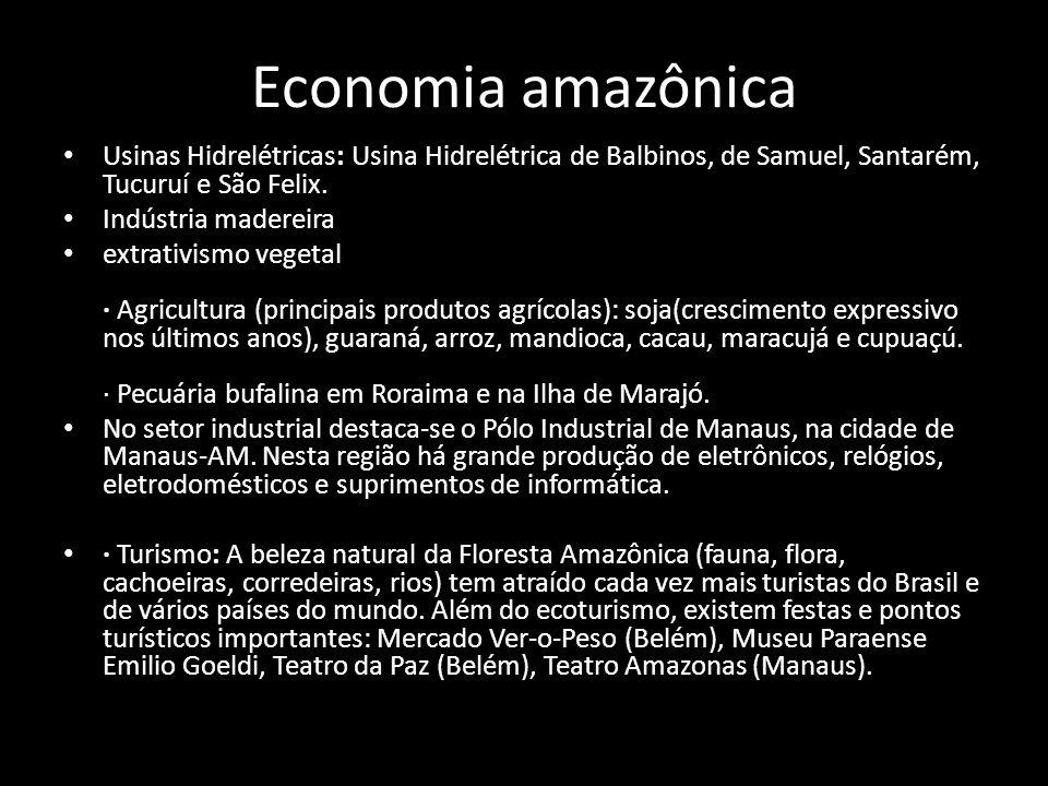 Economia amazônica • Usinas Hidrelétricas: Usina Hidrelétrica de Balbinos, de Samuel, Santarém, Tucuruí e São Felix. • Indústria madereira • extrativi