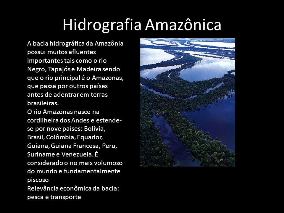 Hidrografia Amazônica A bacia hidrográfica da Amazônia possui muitos afluentes importantes tais como o rio Negro, Tapajós e Madeira sendo que o rio pr