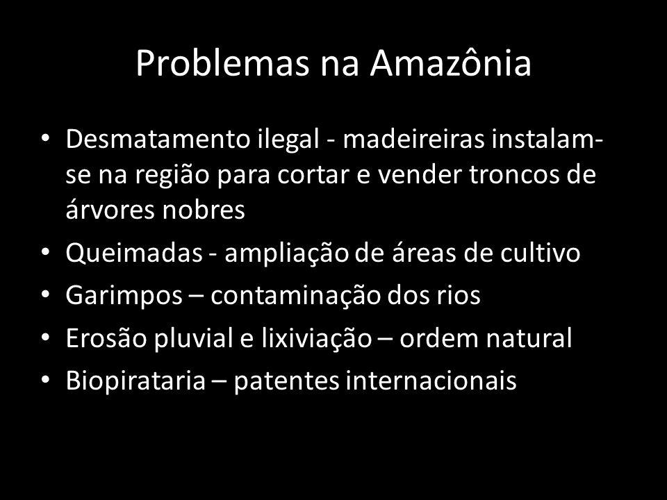 Problemas na Amazônia • Desmatamento ilegal - madeireiras instalam- se na região para cortar e vender troncos de árvores nobres • Queimadas - ampliaçã