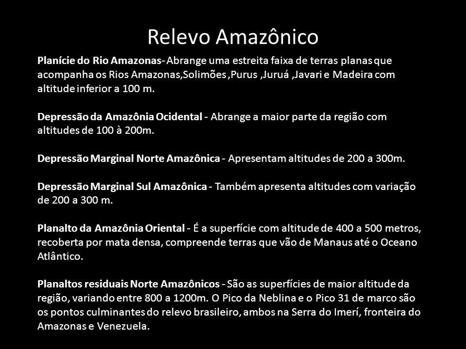 Relevo Amazônico Planície do Rio Amazonas- Abrange uma estreita faixa de terras planas que acompanha os Rios Amazonas,Solimões,Purus,Juruá,Javari e Ma